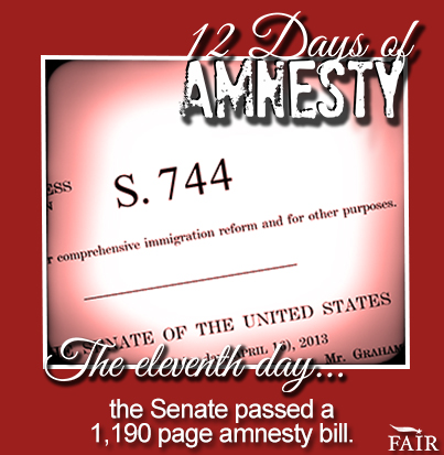 12 Days of Amnesty--Day 11