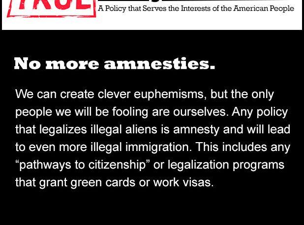 True Immigration Reform: No More Amnesties