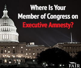 Where Does Your Member of Congress Stand on Executive Amnesty?