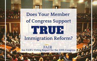 2014 FAIR Voting Report