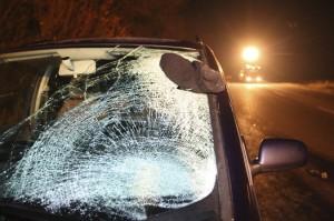 Broken windshield after car crash