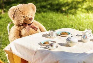 teddy bear sitting at yard and having english breakfast