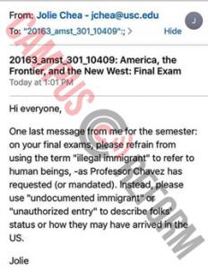 illegalimmigrantterm