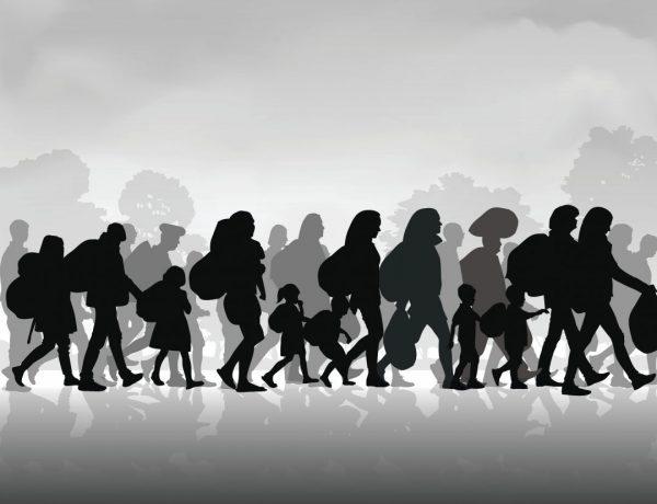 A Progressive Slams Immigration 'Idiots' on the Left